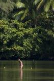 Kleines Mädchen, das im Fluss spielt. Lizenzfreie Stockfotografie