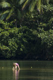 Kleines Mädchen, das im Fluss spielt. Lizenzfreie Stockbilder