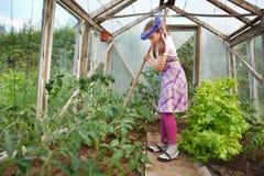 Kleines Mädchen, das im Gewächshaus im Garten arbeitet Stockbild