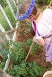 Kleines Mädchen, das im Gewächshaus im Garten arbeitet Stockbilder
