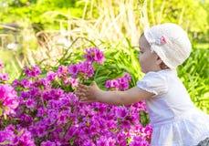 Kleines Mädchen, das mit Blumen spielt Lizenzfreies Stockbild