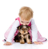 Kleines Mädchen, das mit einem Welpen spielt und kriecht Lokalisiert auf Weiß Lizenzfreies Stockfoto