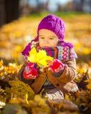 Kleines Mädchen, das mit Herbstblättern spielt Stockfotografie