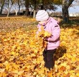 Kleines Mädchen, das mit Laub spielt lizenzfreies stockbild