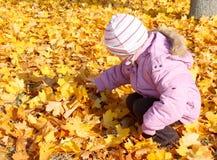 Kleines Mädchen, das mit Laub spielt lizenzfreies stockfoto