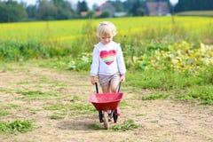 Kleines Mädchen, das mit Schubkarre auf dem Feld geht Lizenzfreies Stockfoto