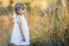 Kleines Mädchen, das Odonata-Wanzen-Fliegen schaut Stockfoto