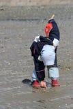 Kleines Mädchen, das Seashells montiert lizenzfreies stockfoto