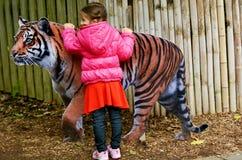 Kleines Mädchen, das Sumatran-Tiger streichelt Stockbild