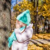 Kleines Mädchen, das Verstecken im Herbst spielt Stockfotos