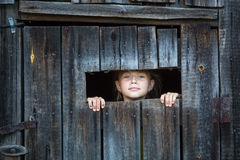 Kleines Mädchen, das vom Fenster der rustikalen Scheune lugt Sommer Lizenzfreies Stockfoto