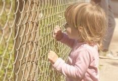 Kleines Mädchen, das Zaun hält Stockfotografie