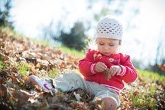 Kleines Mädchen in den Blättern Lizenzfreies Stockbild