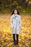 Kleines Mädchen der Schönheit, das in Herbstpark geht stockfoto