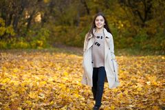 Kleines Mädchen der Schönheit, das in Herbstpark geht lizenzfreies stockfoto