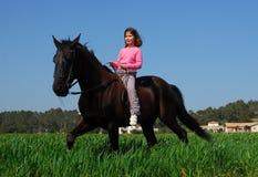 Kleines Mädchen des Brownstallion Stockfotografie