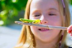 Kleines Mädchen des Kindes, das betenden Mantis schaut lizenzfreie stockbilder