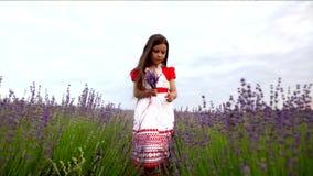 Kleines Mädchen in einem Lavendel stock video footage