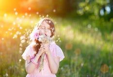 Kleines Mädchen in einem rosa Kleid, das einen Blumenstrauß des Löwenzahns in den Strahlen eines hellen Sonnenscheins durchbrennt Stockfotos