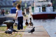 Kleines Mädchen feedind Wildenten in Landungstadium Lizenzfreie Stockfotos