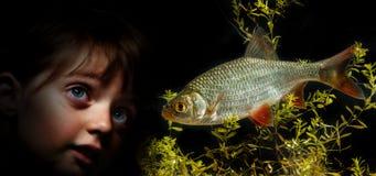 Kleines Mädchen hinter dem Aquarium, das auf Fischen schaut Lizenzfreie Stockfotos