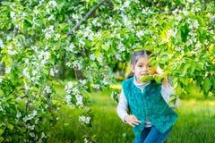 Kleines Mädchen im grünen Garten am sonnigen Tag Lizenzfreie Stockfotografie