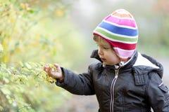 Kleines Mädchen im Herbst Stockfotografie