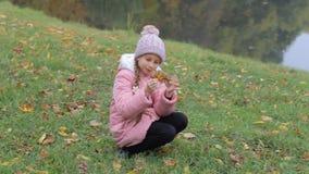 Kleines Mädchen im Parkherbst Entzückendes kleines Mädchen-Lächeln stock video footage