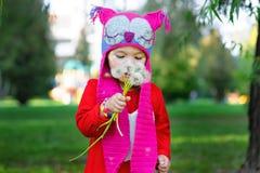 Kleines Mädchen im Sommerpark, der einen Löwenzahn hält Stockfotografie