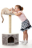 Kleines Mädchen küßt ihre Katze. Lizenzfreie Stockbilder
