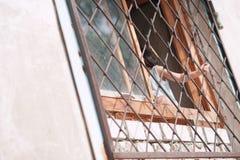 kleines Mädchen, Kind, die Stangen auf dem Fenster halten, Russland, Bashkortostan, Ufa stockfoto