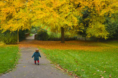 Kleines Mädchen läuft weg in einen Park mit gelben Bäumen und gefallenen Blättern stockfotografie