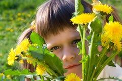 Kleines Mädchen lugt heraus durch Bündel Löwenzahn Stockfotografie