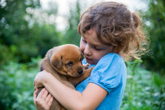 Kleines Mädchen mit einem Welpen in ihren Armen Lizenzfreie Stockfotos