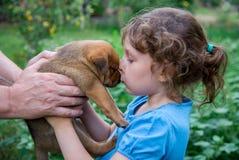 Kleines Mädchen mit einem Welpen in ihren Armen Lizenzfreies Stockfoto