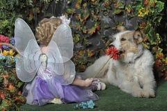 Kleines Mädchen mit Flügeln und einem Hund stockbilder