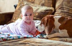 Kleines Mädchen mit Hund Lizenzfreies Stockbild