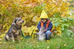Kleines Mädchen mit Hund und Katze Stockfotos