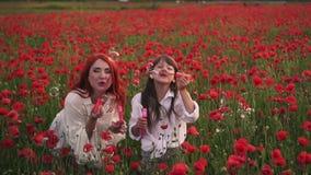 Kleines Mädchen mit ihrer Mutter, die mit Seifenblasen in blühendem Mohnfeld, Zeitlupe spielt stock footage