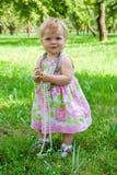 Kleines Mädchen mit Kornen Stockbilder