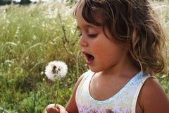 Kleines Mädchen mit Löwenzahn stockfoto