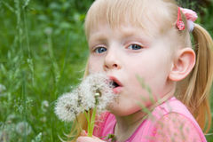 Kleines Mädchen mit Löwenzahn Lizenzfreies Stockfoto