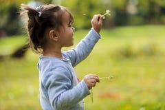 Kleines Mädchen mit Löwenzahn Lizenzfreie Stockfotos