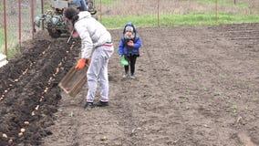 Kleines Mädchen mit Mutter-Saatkartoffel 4K UltraHD, UHD stock footage