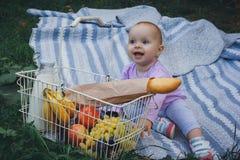 Kleines Mädchen mit Picknickkorb im Sommerpark lizenzfreies stockbild
