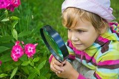 Kleines Mädchen mit Vergrößerungsglas betrachtet Blume lizenzfreies stockfoto