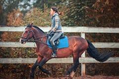 kleines Mädchen reitet ein Pferd Stockbild