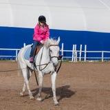 Kleines Mädchen reitet ein Pferd, quadratisches Foto stockbilder