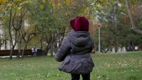 Kleines Mädchen sammelt Herbstlaub im Park stock video footage