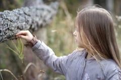 kleines Mädchen schaut beiseite im Herbst im Park stockbilder